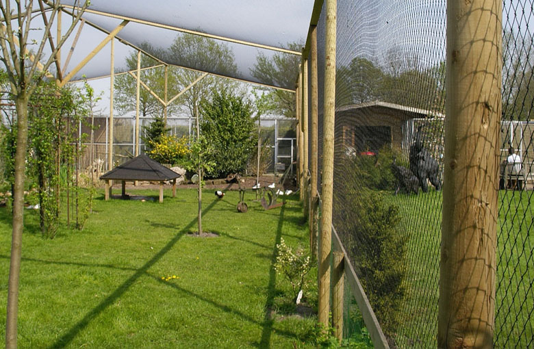 Knotted aviary nets with diamond mesh